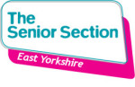 Senior Section EY logo