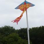 Phoenix Camp flag
